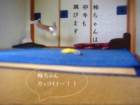 Mvi_201112_2
